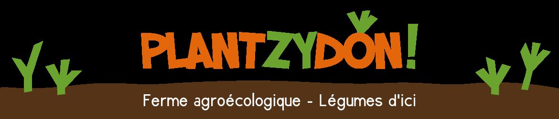 Plantzydon